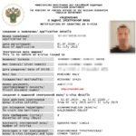 E-visa Ryssland - Hur du skaffar ett ryskt elektroniskt visum - e-visum
